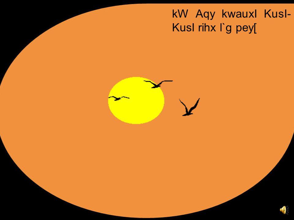 kW Aqy kwauxI KusI-KusI rihx l`g pey[